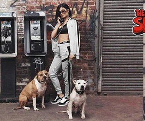 kylie jenner, puma, and dogs image