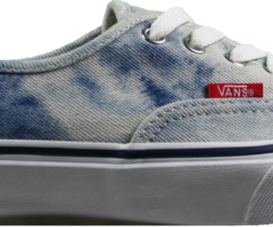 beauty and vans image