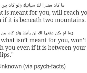 quotes, tumblr, and unrequited image