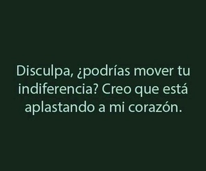 frases and indiferencia image