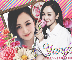 flowers, timeline cover, and yangrong image