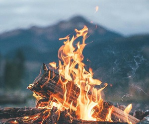 fire, marshmallow, and autumn image