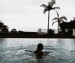 palm trees, summer, and swimming image