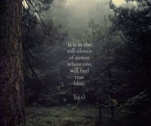 quotes, nature, and silence image