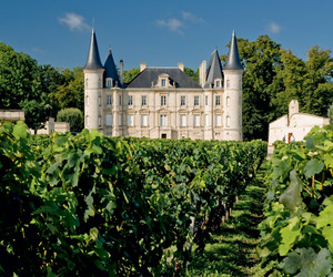 castle, chateau, and vineyard image
