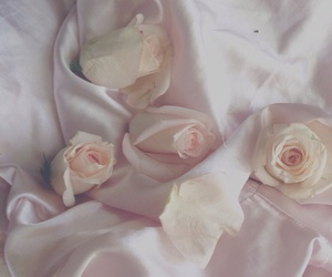 pink, soft, and aesthetic image