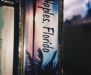 florida, palmtrees, and summer image