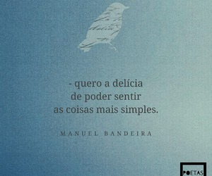 phrases, portuguese, and manuel+bandeira image