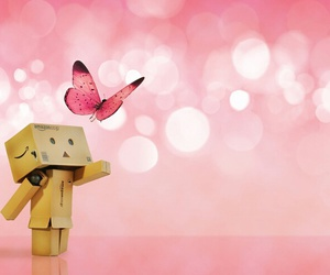 butterfly and danbo image