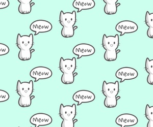 cat, wallpaper, and meow image