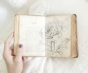 book, art, and flower image