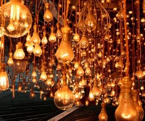 brown, hanging, and lightbulb image