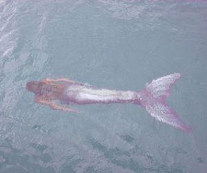 mermaid, ocean, and pastel image