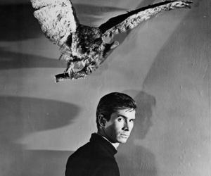 Psycho and anthony perkins image