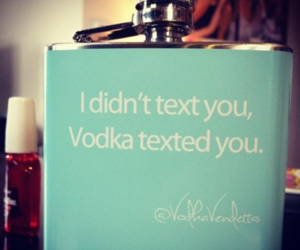 vodka, text, and drunk image