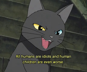 cat, anime, and quotes image