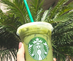 starbucks, green, and green tea image