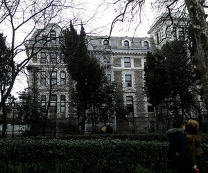 highschool, istanbul, and tree image
