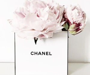 flowers, chanel, and pink image
