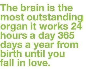 love, brain, and quotes image
