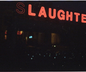 laughter, slaughter, and neon image