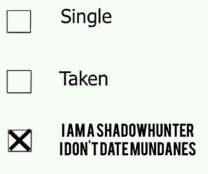 the mortal instruments, clace, and will herondale image