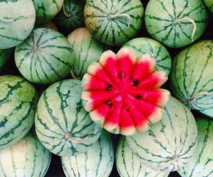food, fruit, and water melon image