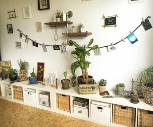 boho, plants, and room image