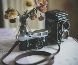 flowers, camera, and photo image
