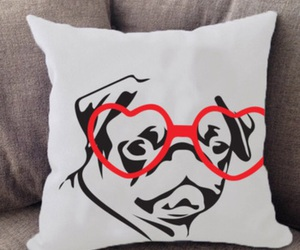 pug, animals, and dogs image