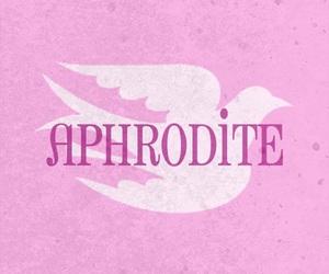 aphrodite, pink, and god image