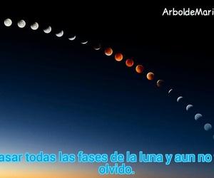 amor, luna, and desamor image