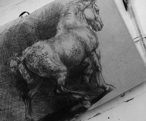 art, horse, and horse drawing ink image