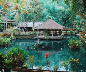 bali, green, and house image