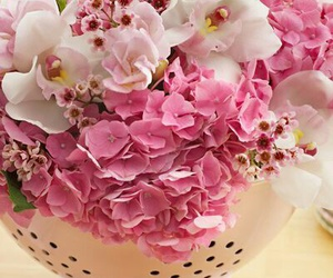 flowers, home decor, and pink image