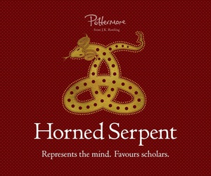 house, magic, and ilvermorny image