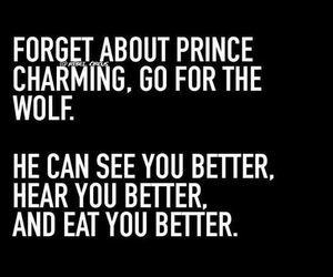 wolf, prince charming, and quote image