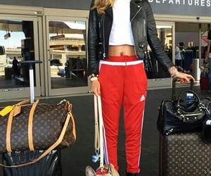 dog, red, and ferragni image