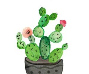 cactus, ideas, and interior design image
