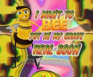 meme, bee, and funny image