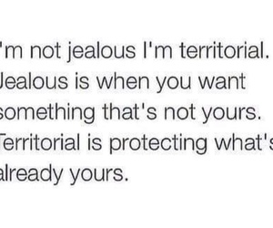 jealous, quote, and Relationship image