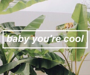 cool, baby, and green image