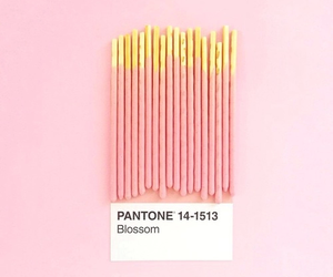 pink, pantone, and aesthetic image