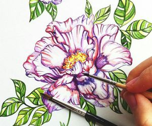 beutiful, drawing, and flower image