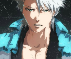 bleach, manga, and toshiro image