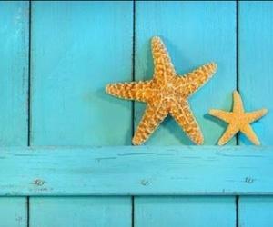 estrella, mar, and star image