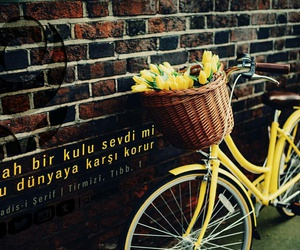 yellow, flowers, and bicycle image