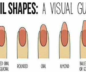 nail shapes image