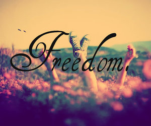 freedom, holiday, and free image