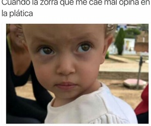 bye, frases, and zorra image